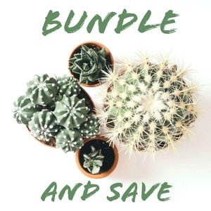 Bundle 3 Items for a 15% discount!